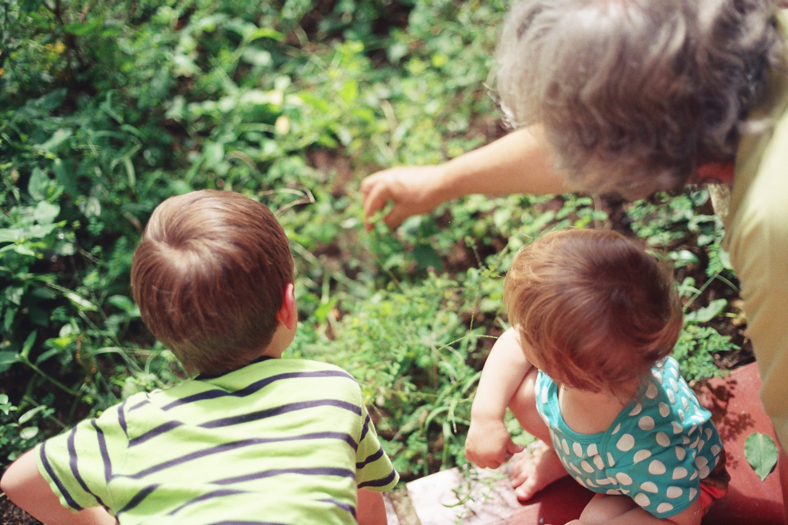 Common mistakes whilst making a Will