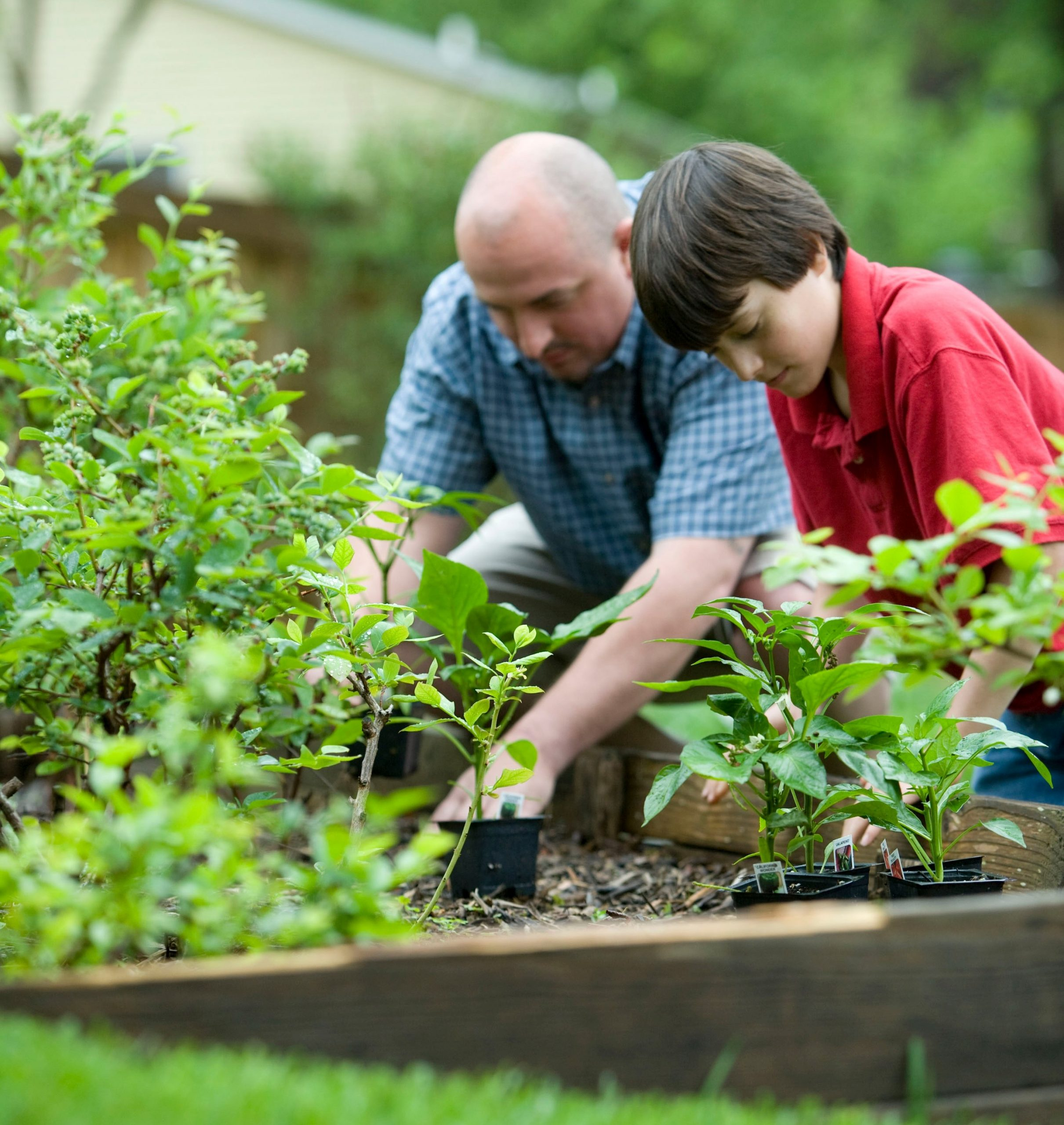 Gardening later in life