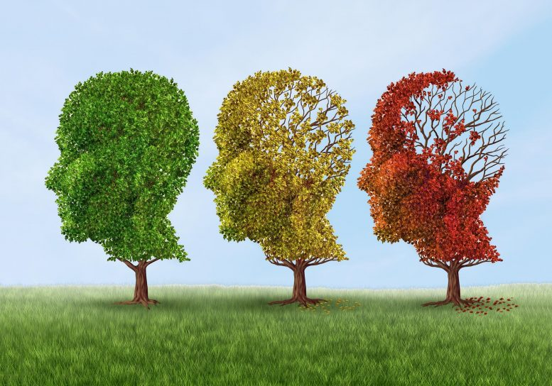 Combating Dementia and Alzheimer's disease